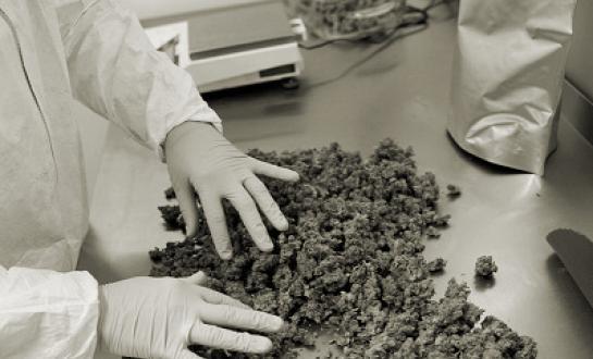 Medicinal marihuana