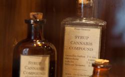 Nineteenth century medicinal cannabis bottles on display in the Hash Marihuana Cáñamo and Hemp Museum